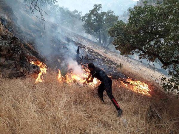 رد پای شکارچیان غیرمجاز در آتشسوزی «ششدار»
