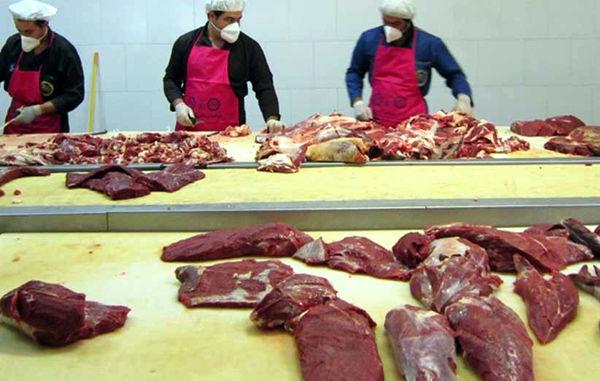 افزایش تولید گوشت قرمز در سمنان