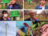 نصب و راه اندازی سامانههای ضدسرما در سطح باغات شهرستان مراغه