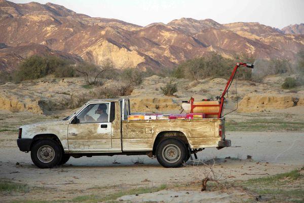 2200 هکتار از مراتع سیستان وبلوچستان علیه ملخ صحرایی سمپاشی شد