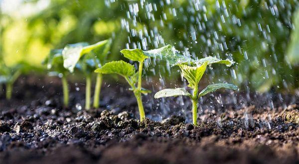 614 پروژه ملی آب و خاک پنجشنبه افتتاح میشود