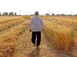 تداخلات اراضی کشاورزی قزوین تعیین تکلیف شد