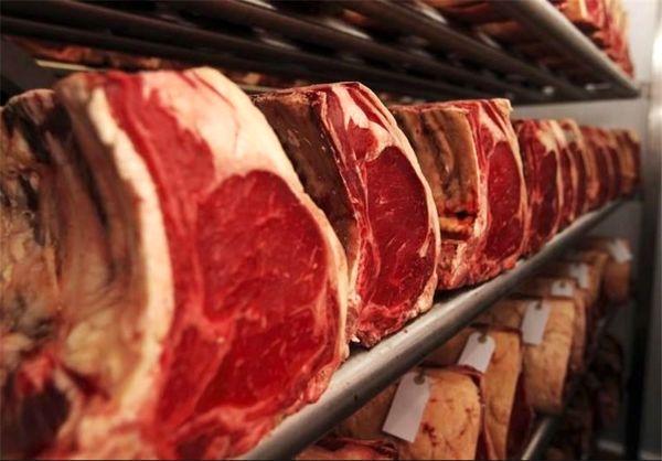 بازاریابی و تجاری سازی محصولات پروتئینی