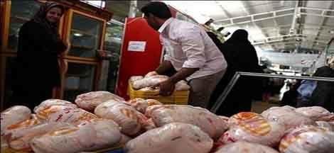 بازار مرغ در اصفهان جای نگرانی ندارد
