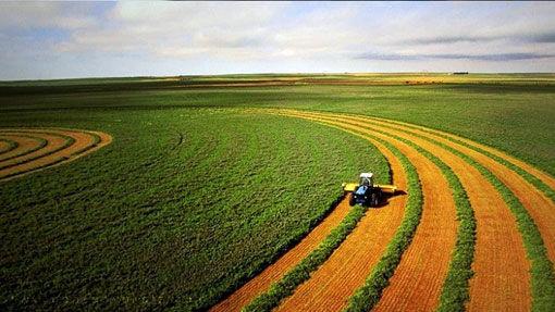 رفع تداخل ٢٩٥٢ هکتار از اراضی کشاورزی شهرستان مراغه به نفع کشاورزان