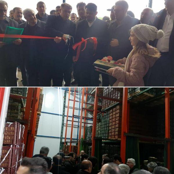 افتتاح سردخانه 5 هزار تنی  ذخیره سازی میوه در شهرستان اشنویه