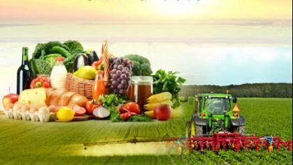 بازاریابی محصولات کشاورزی و دامی