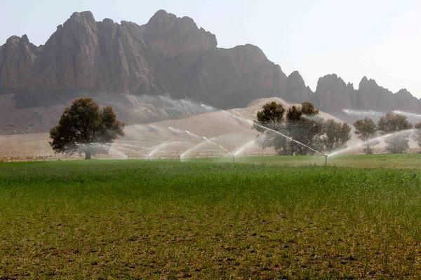 تجهیز 2.4 میلیون هکتار از اراضی کشاورزی کشور به سامانه نوین آبیاری