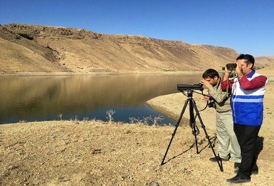 پایش مستمر زیستگاه های پرندگان در آذربایجانغربی