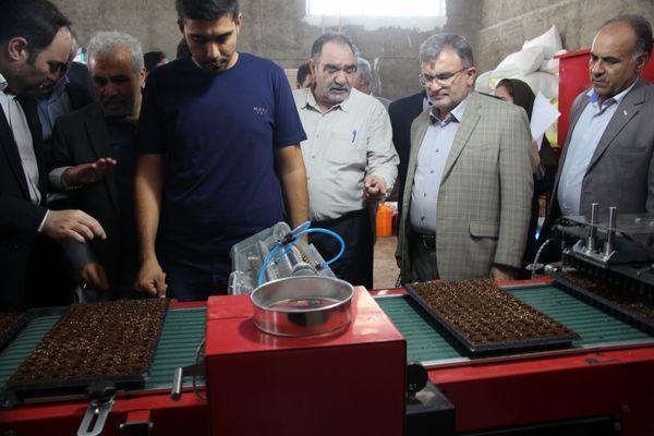 تولید نشا مکانیزه گل و گیاهان زینتی برای اولین بار در کشور