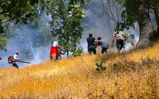 اطفا کامل آتشسوزی در جنگلهای ارسباران در منطقه خداآفرین