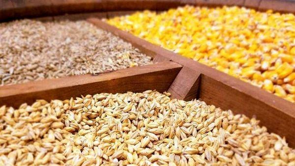 ۴۵ هزار تن نهاده کشاورزی در خراسان شمالی توزیع شد