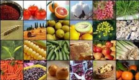 کمتر از ۴۰ درصد محصولات کشاورزی اصفهان بیمه هستند
