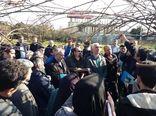 روز مزرعه کیوی در تالش برگزار شد