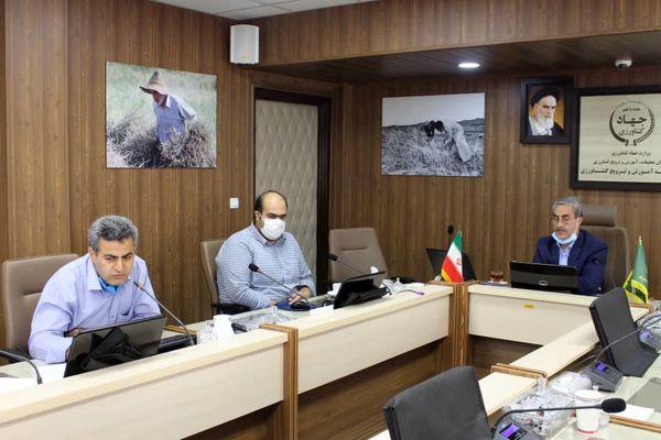 احصاء تجربههای موفق در کمیته تدوین سند بهرهوری آب