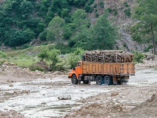 بیش از ۷۳ هزار کیلوگرم چوب و زغال قاچاق در چهارمحال و بختیاری کشف و ضبط شد