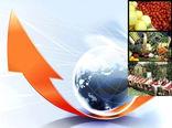 افزایش ۲۶ درصدی صادرات بخش کشاورزی در سال ۹۹
