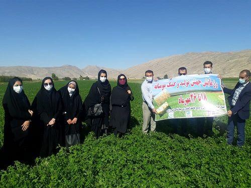 بسیج همگام با کشاورز در فیروزآباد اجرایی شد