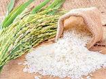 عرضه برنج طارم مازندران در بورس کالا