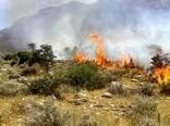 طرح خط آتشبر در مناطق تحت نظر محیط زیست تهران اجرا می شود