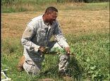 کشاوزی٬ شغل دوم کهنهسربازان