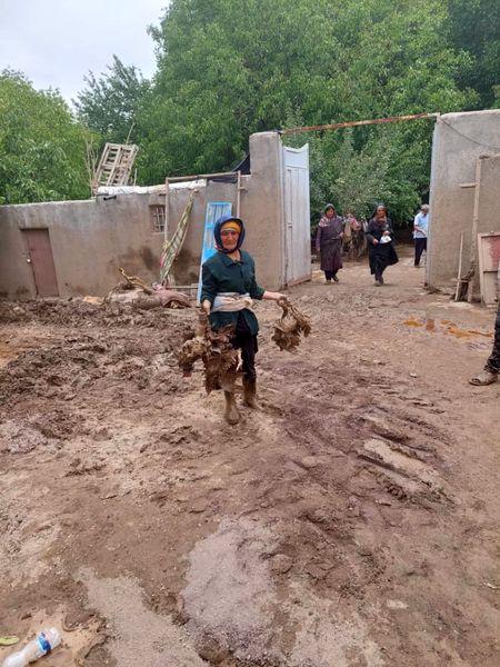 خسارت سیلاب  به زیربخشهای کشاورزی و دامپروری بافت