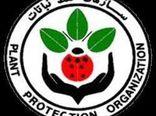 فروشگاه های عرضه سموم قاچاق در استان بوشهر پلمپ شدند