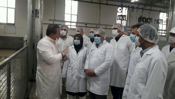 بازدید استاندار قزوین از یک واحد کشتارگاه صنعتی دام در شهرستان بوئین زهرا