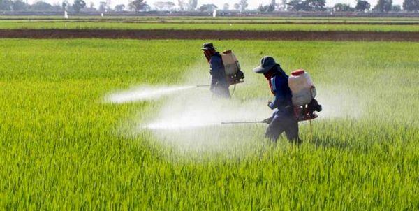 توزیع بیش از 9 هزار تن کود شیمیایی بین کشاورزان استان ایلام
