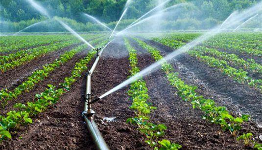 چالشهای بودجه کشاورزی زیر ذرهبین