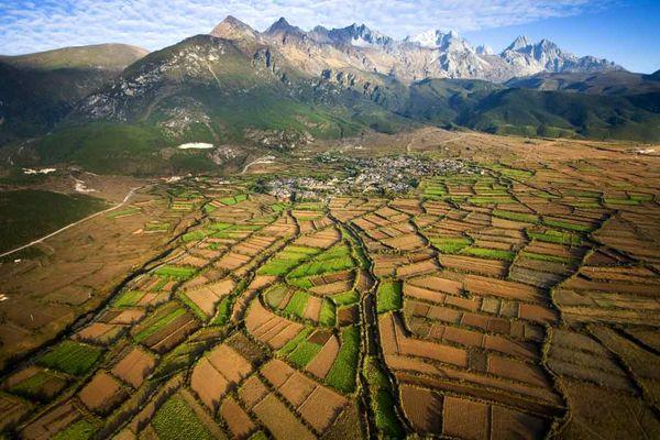 پچ گیاهی پاییزه در چین