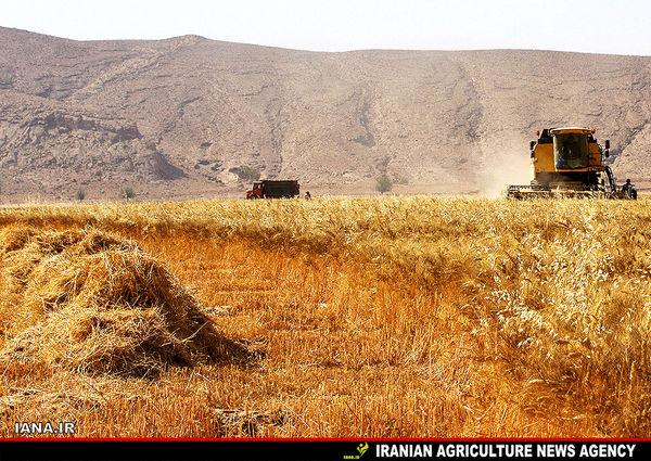 سرمایهگذاری در بخش کشاورزی نسخه مناسب دوران تحریم