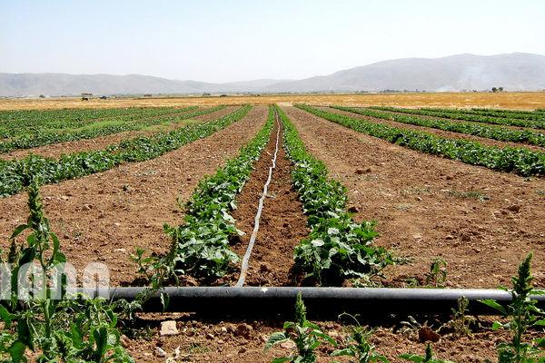 تجهیز ۲.۲ میلیون هکتار از اراضی کشور به سیستمهای نوین آبیاری