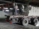 کشف و توقیف 5 هزار و 950 کیلوگرم کود اوره خارج ازشبکه توزیع کارگزاران شرکت خدمات حمایتی کشاورزی
