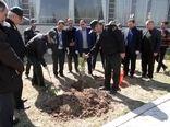 کاشت ۲۵ هزار اصله نهال توسط نیروهای ارتشی و انتظامی  در آذربایجان غربی