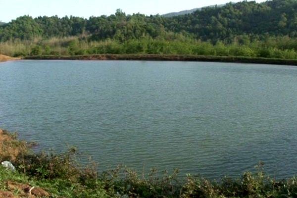 ذخیرهسازی ۲۰۰ میلیون مترمکعب آب با احیای آببندانها در گیلان