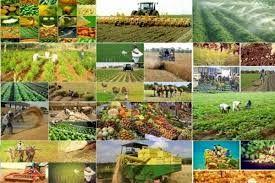 فارس دارای اقلیم متنوع و با شرایط کشاورزی خاص است