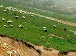 چرای دام در مراتع قشلاقی کاشان تا بیستم اردیبهشت ادامه دارد
