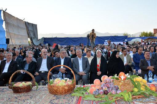 دومین جشنواره هلوی شندآباد برگزار شد