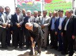 عملیات اجرایی احداث گلخانه 25 هکتاری سبزی و صیفی در شهرستان هریس آغاز شد