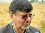 بالغ بر ۹۸ درصد وجه خرید گندم کشاورزان استان به حساب آنان واریز شد