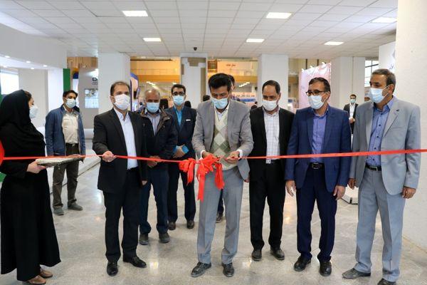 افتتاح نمایشگاه تخصصی کشاورزی در استان کرمان