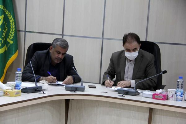 خرید بالغ بر ۶۱ هزار تن گندم مازاد بر نیاز کشاورزان استان لرستان
