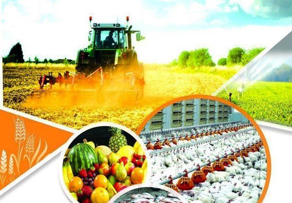 تامین تمام نهادههای مورد نیاز کشاورزان کرمان